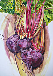 Beetroot in a trug, acrylic painting by Kate Chitham