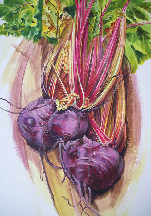 Beetroot, acrylic painting on board