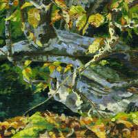 Autumn hops